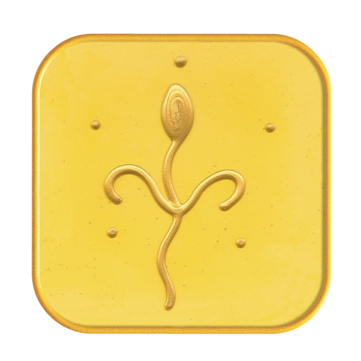Master Symbol Kuthumi